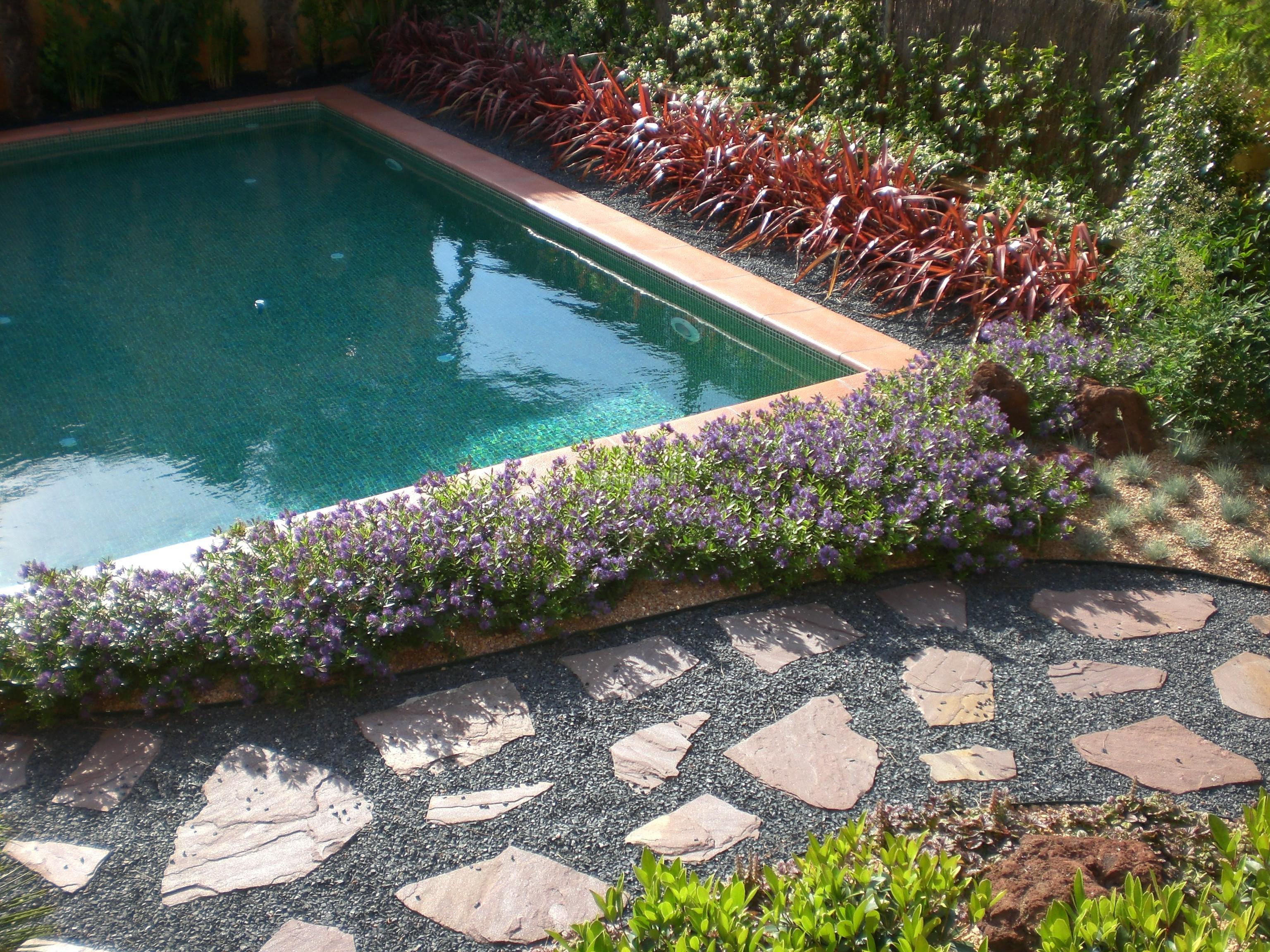 Jardiner a y paisajismo pisciman a for Jardineria y paisajismo